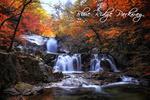 Blue Ridge Parkway - Waterfall & Autumn Colors - Lantern Press Photography