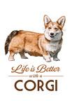 Corgi - Life is Better - White Background - Lantern Press Artwork