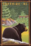 Sapphire, North Carolina - Black Bear in Forest - Lantern Press Artwork