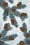 Blue Spruce - Branch, Pinecones & Needles