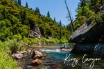 Kings Canyon National Park - River & Trees - Lantern Press Photography