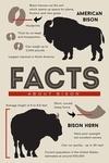Facts About Bison - Lantern Press Artwork