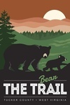 Tucker County, West Virginia - Bear the Trail - Lantern Press Artwork