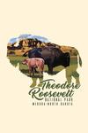 Theodore Roosevelt NP, North Dakota - Bison and Calf - Contour - Lantern Press Artwork