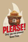 Smokey the Bear - Please - Contour - Vintage Poster