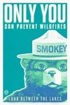 Land Between the Lakes, Kentucky - Smokey The Bear - Only You - Vintage Neon - Lantern Press Artwork