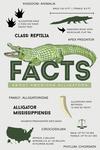 Facts About American Alligators - Lantern Press Artwork
