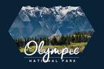 Olympic National Park, Washington - Hurricane Ridge Visitor Center - Contour - Lantern Press Photography
