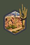 Desert Cactus Trail Scene at Sunset - Contour - Lantern Press Artwork