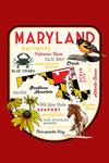 Maryland - Typography & Icons - Black-Eyed Susan - Contour- Lantern Press Artwork