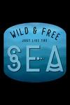 Wild & Free Just Like the Sea - Contour - Lantern Press Artwork