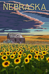 Nebraska - Wheat Fields - Shack & Sunflowers - Lantern Press Artwork