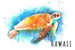 Hawaii - Sea Turtle - Watercolor - Lantern Press Artwork